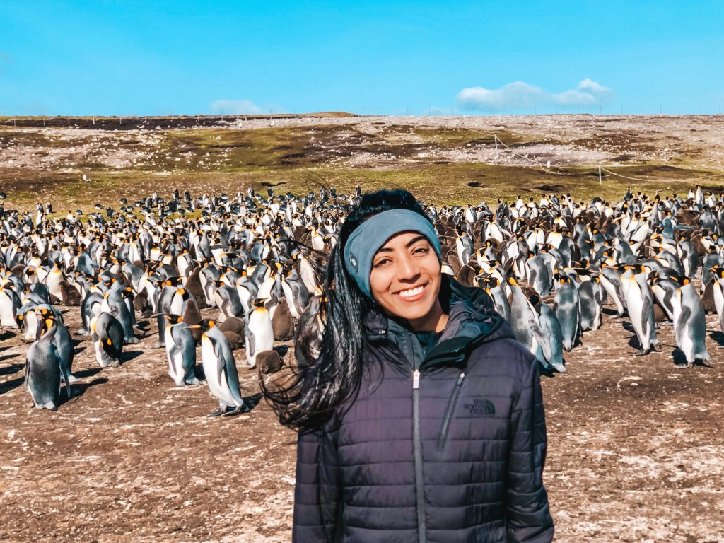 Me standing next to hundreds of King penguins in the Falkland Islands