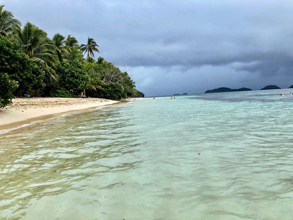 a photo of the beach in dravuni island, fiji
