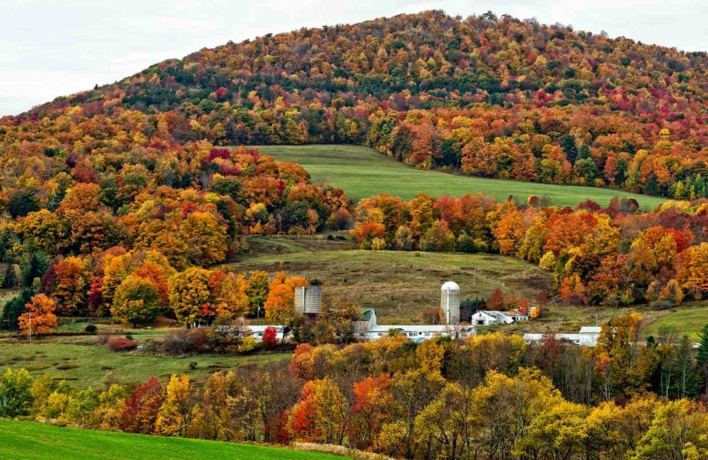 One of the most unique USA fall trips is the Catskills in New York.