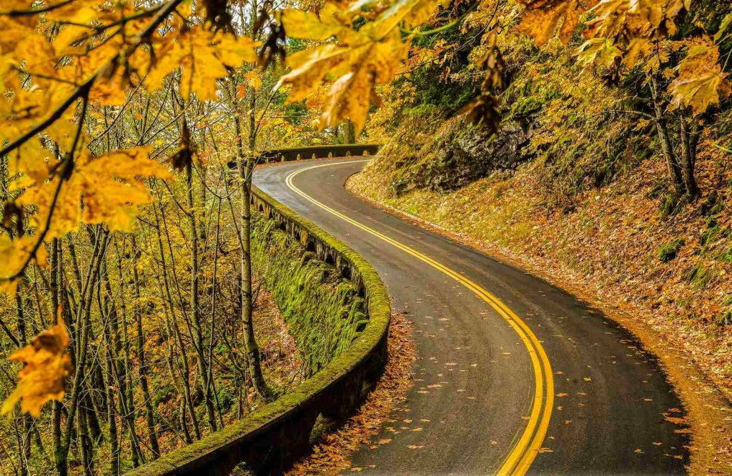 An east coast USA fall trip is Columbia River Gorge.
