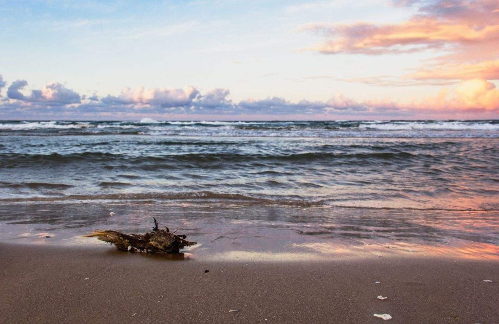 Padre Island is one of the best winter trips in the U.S.
