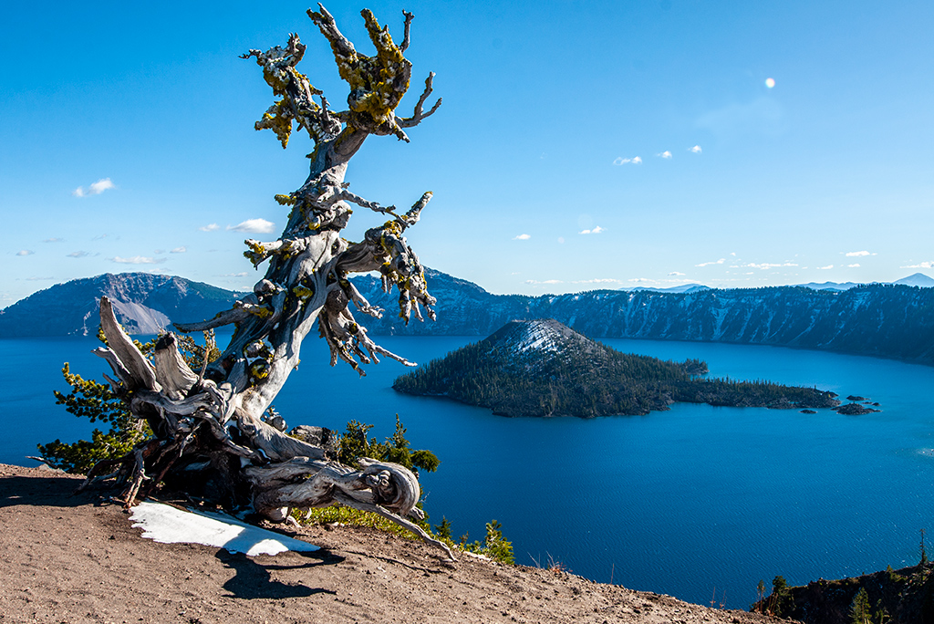 Crater Lake National Park is one of several unique places to visit in Oregon.