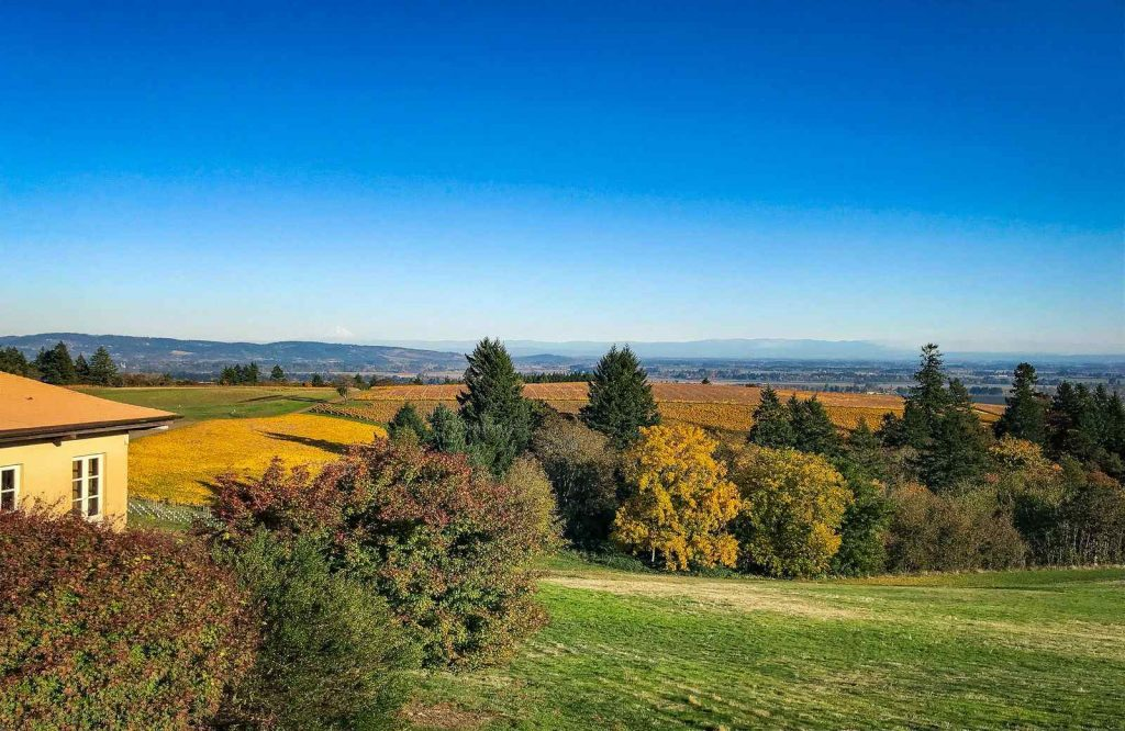 Willamette Valley Wine Region is one of the best unique places to visit in Oregon.
