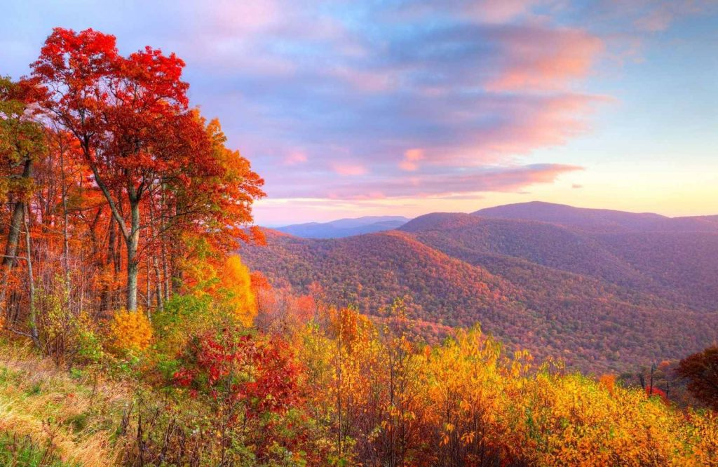 Shenandoah National Park is one of the best getaways on the East Coast.