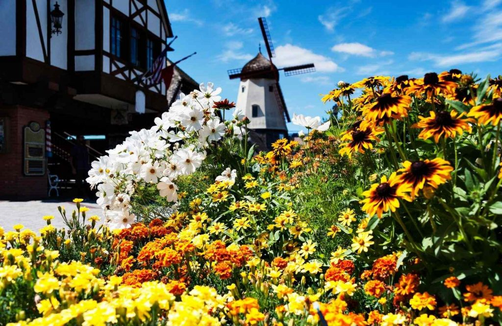 Solvang is one of the most unique and best getaways on the West Coast.