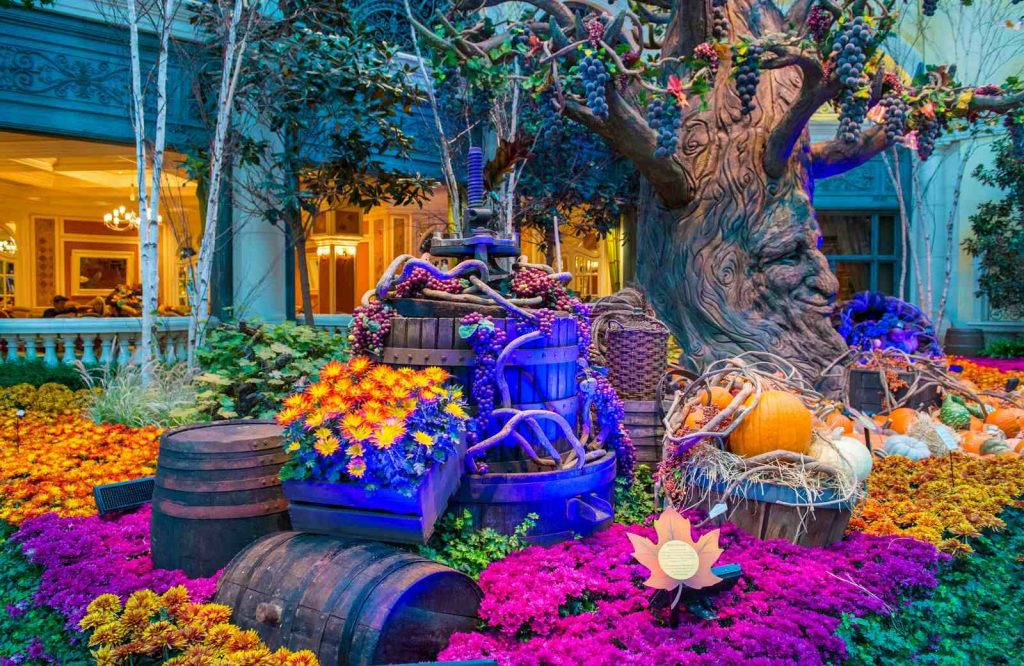 Add the Bellagio Gardens to your list of free things to do in Vegas.
