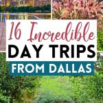 16 Spontaneous and Fun Day Trips From Dallas