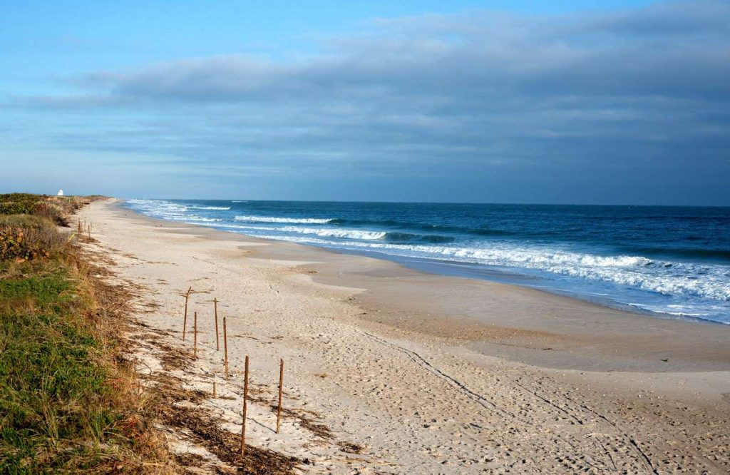 If you're looking to visit some national parks on the East Coast, visit Cape Canaveral National Seashore.