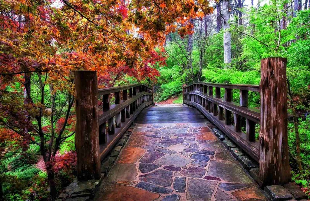 If you're looking for things to do in Hot Springs, Arkansas, check out the Garvan Woodland Gardens.