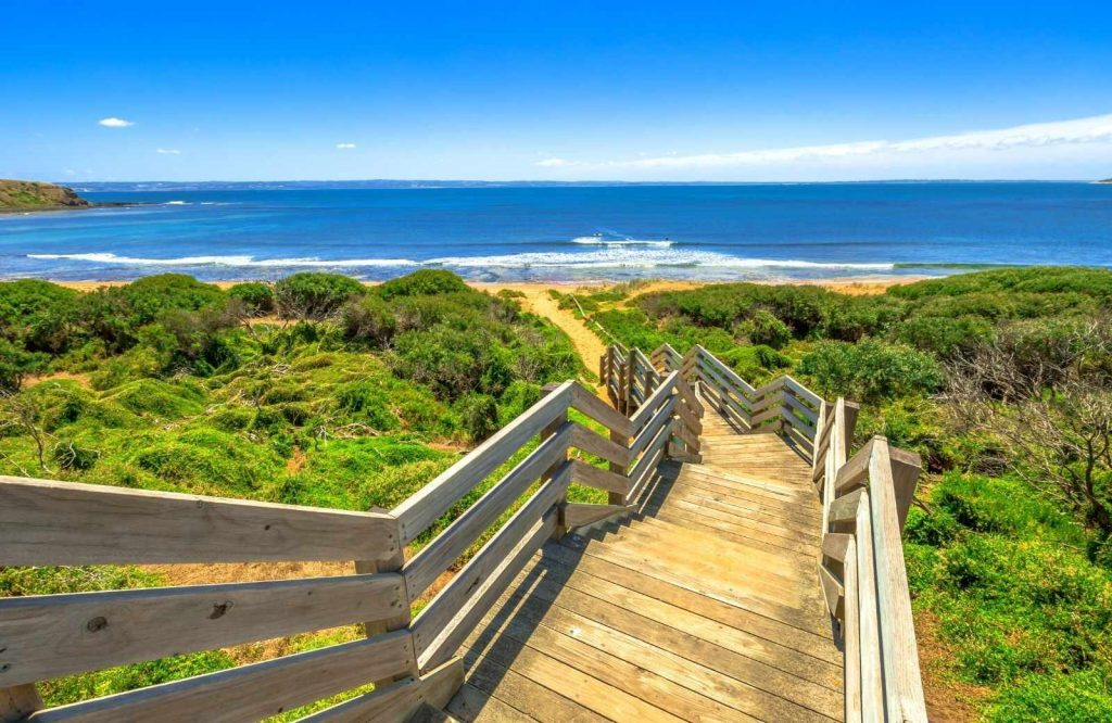 Phillip Island is a must do day trip from Melbourne.