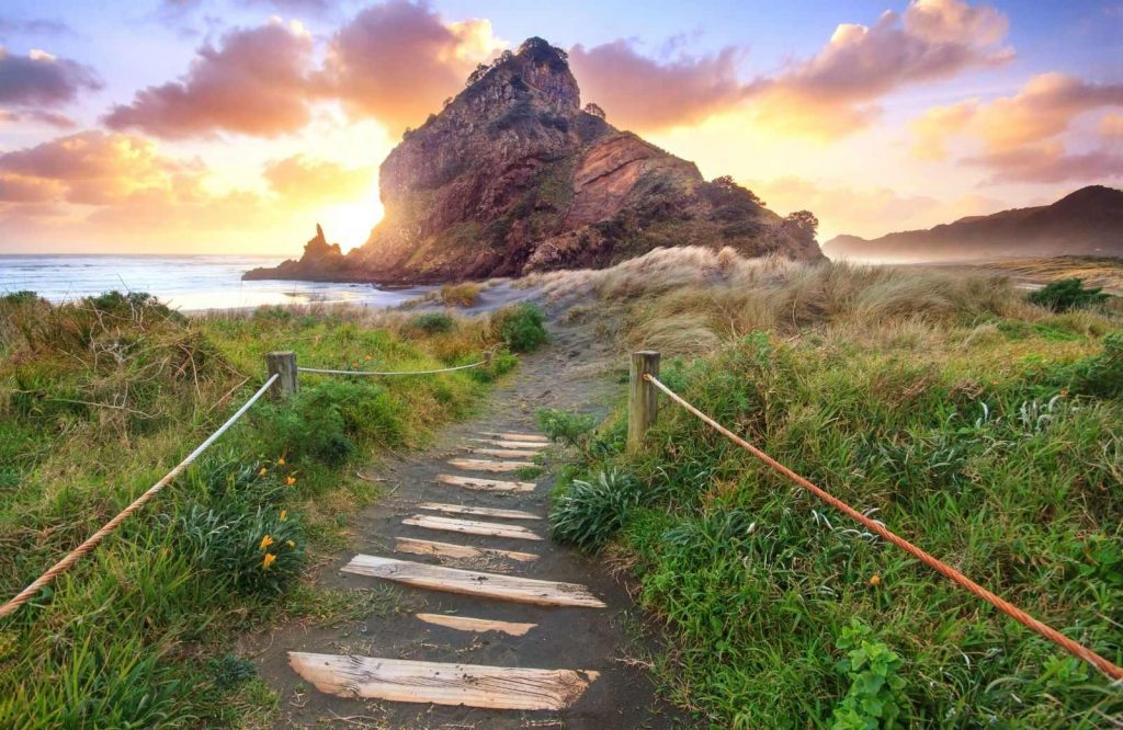 Piha is one of the coolest day trips from Auckland.
