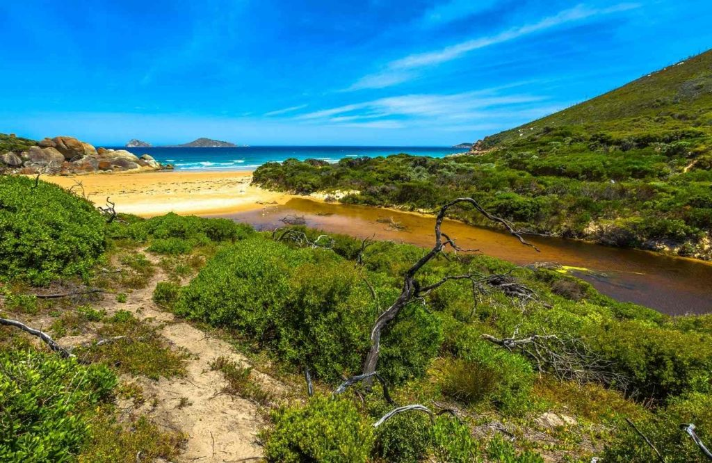 One of the furthest yet awesome day trips from Melbourne is Wilsons Promontory National Park.