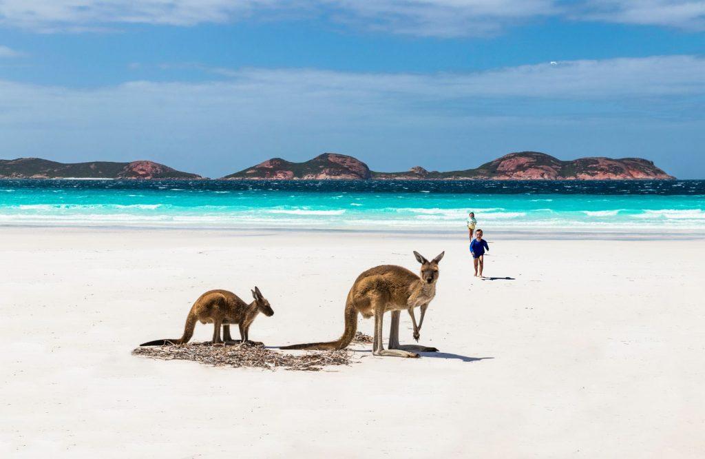 One of the coolest landmarks in Australia is Kangaroo Island.